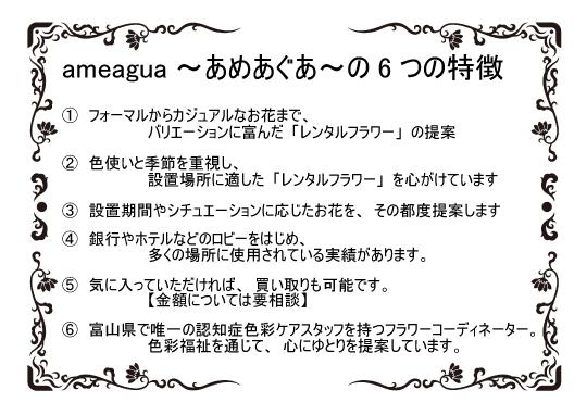 ameaguaの特徴